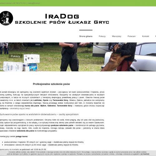 Bytom - szkolenie psów gmina zbrosławice