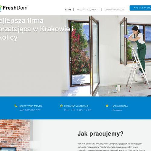 Kraków - czyszczenie parą wodną