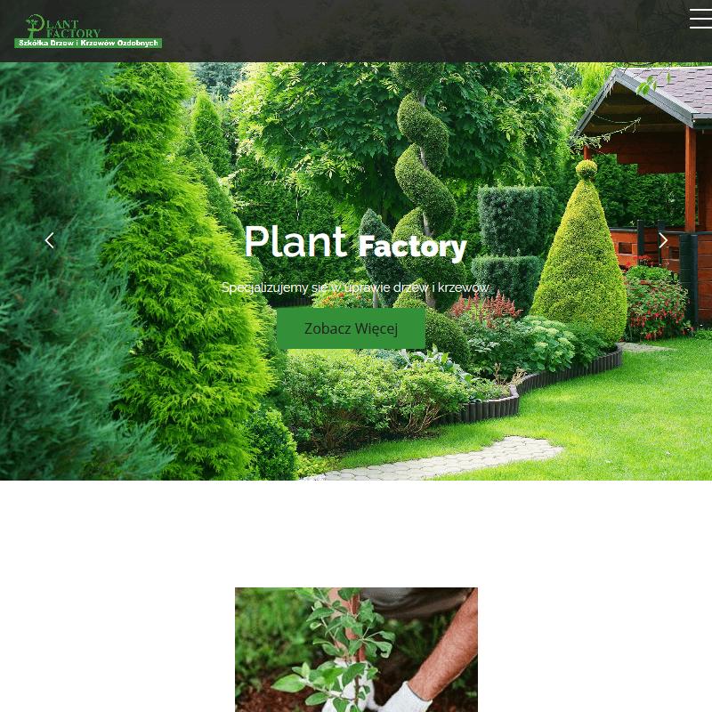 Tanie rośliny ogrodowe w Grójcu