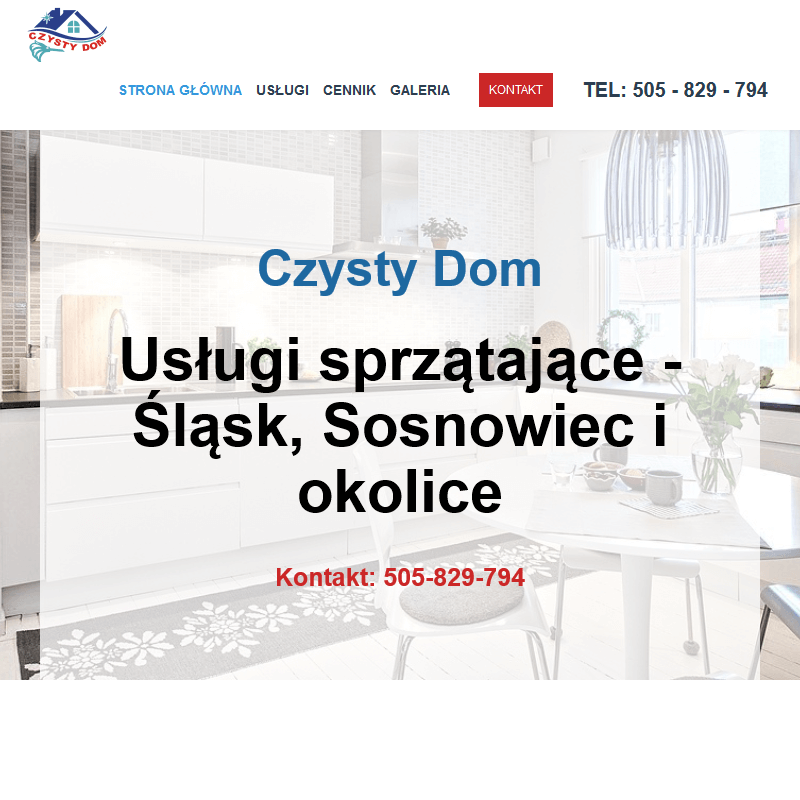 Firma sprzątająca śląsk - Sosnowiec